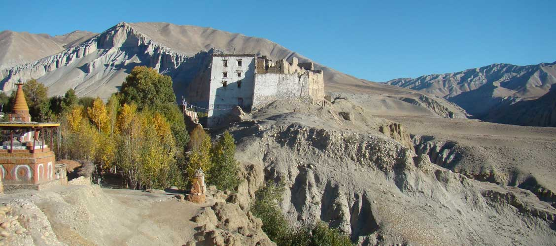 best time to visit mustang