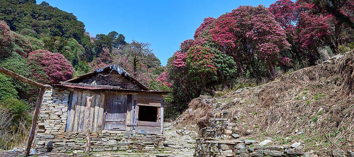 trekking in Nepal in May